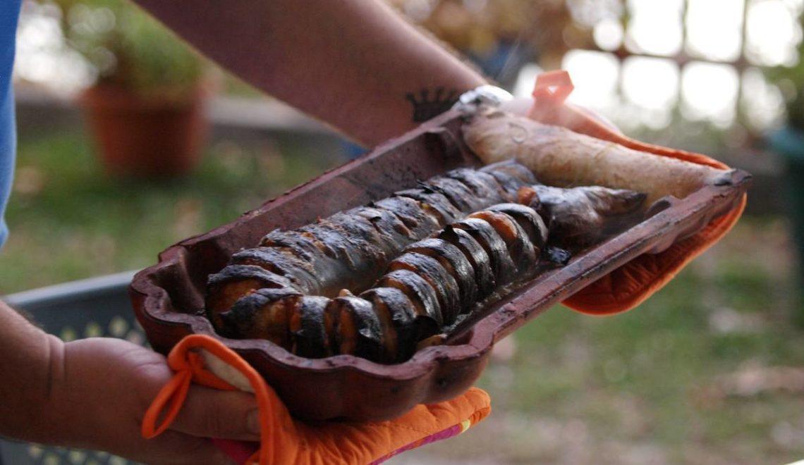 Χέλι στο κεραμίδι και μπατσαριά στην όχθη της Παμβώτιδας