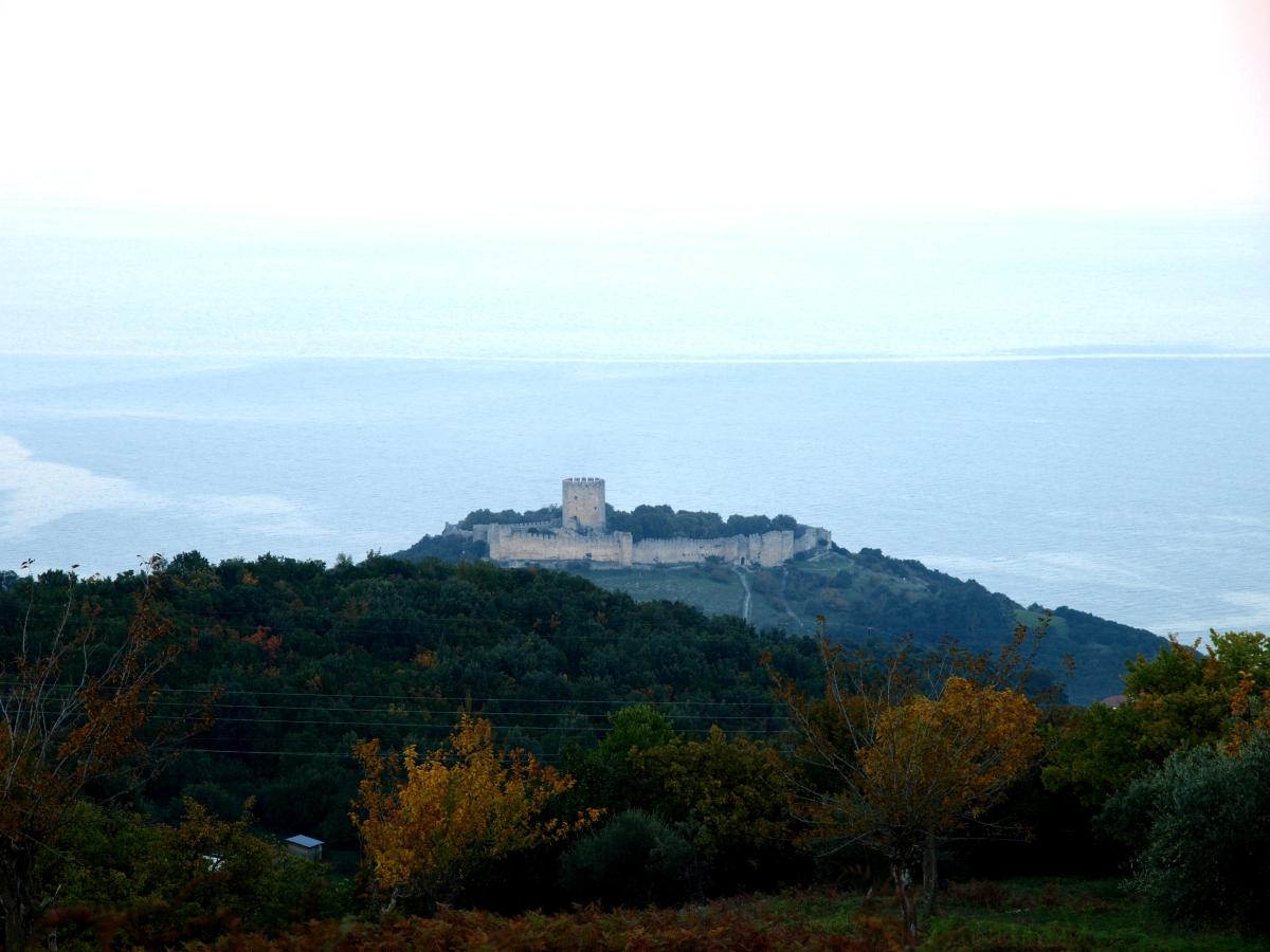 Οι πλαγιές του τσίπουρου από κούμαρα και το κάστρο του Πλαταμώνα.